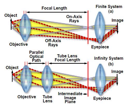 Microscopy Glossary